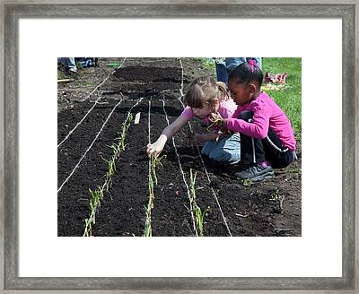 Children At Work In A Community Garden Framed Print by Jim West