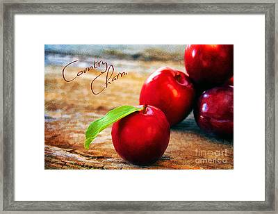 Country Charm Framed Print by Darren Fisher