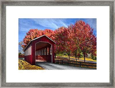 Country Lane Framed Print by Debra and Dave Vanderlaan