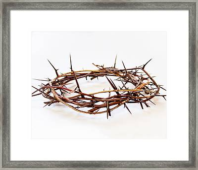 Crown Of Thorns  Framed Print by Dee  Savage