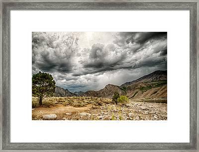 Dark Skies At Grant Lake Framed Print by Cat Connor
