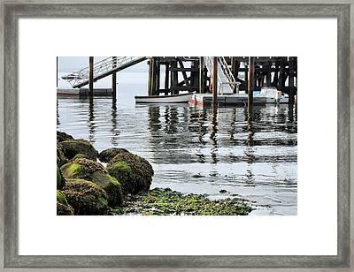Dockside Framed Print by JC Findley