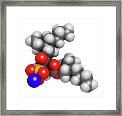 Docusate Sodium Stool Softener Drug Framed Print by Molekuul