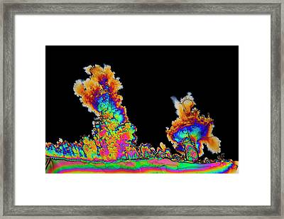 Dopamine Drug Crystals Framed Print by Antonio Romero