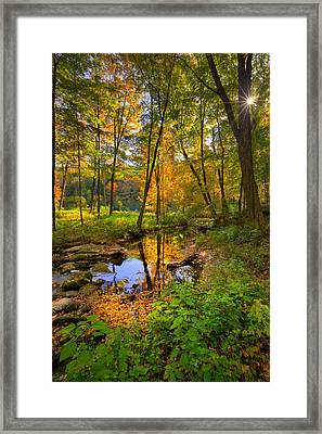 Early Autumn Framed Print by Bill Wakeley