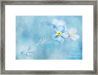 Forget-me-not Framed Print by Svetlana Sewell