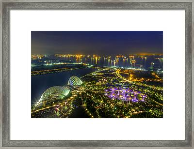 Gardens By The Bay Framed Print by Mario Legaspi