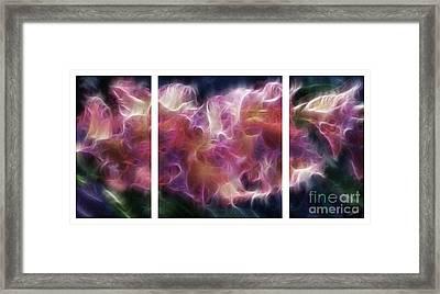 Gladiola Nebula Triptych Framed Print by Peter Piatt