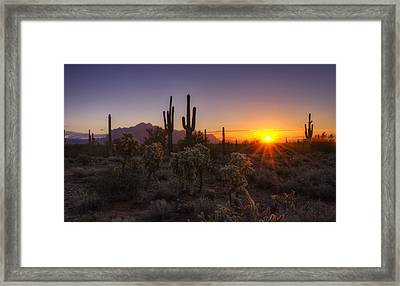 Good Morning Arizona  Framed Print by Saija  Lehtonen