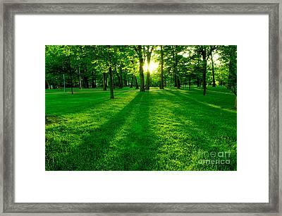 Green Park Framed Print by Elena Elisseeva
