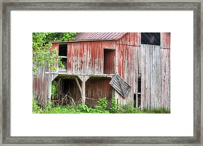 Hanging By A Moment  Framed Print by JC Findley