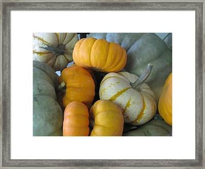 Harvest Time Framed Print by Shawn Hughes