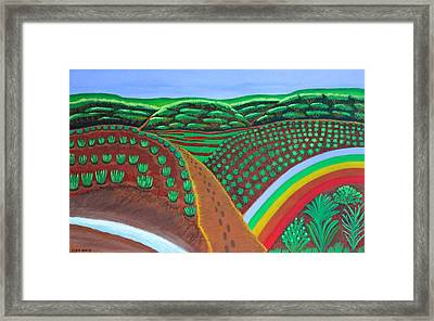 Hidden Forest Framed Print by Lorna Maza