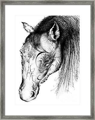 Horse Head Framed Print by Penelope Fedor