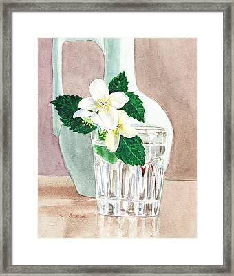 Jasmine Framed Print by Irina Sztukowski