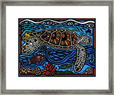 Kahaluu Honu Framed Print by Lisa Greig