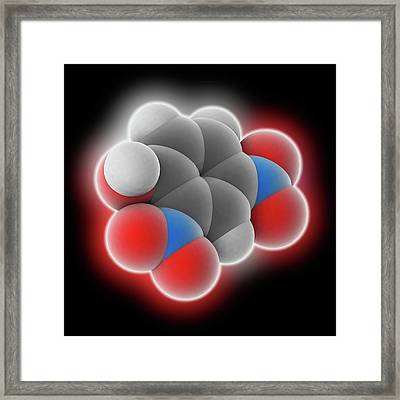 2 Framed Print by Laguna Design