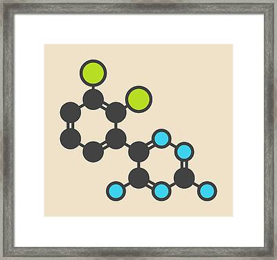 Lamotrigine Seizures Drug Molecule Framed Print by Molekuul