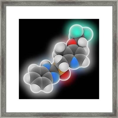 Lansoprazole Drug Molecule Framed Print by Laguna Design