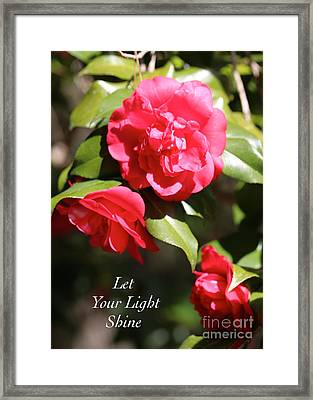 Let Your Light Shine Framed Print by Carol Groenen