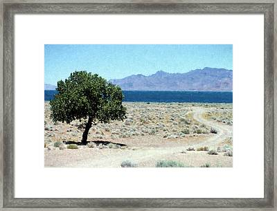Loneliness  Framed Print by Richard Rizzo