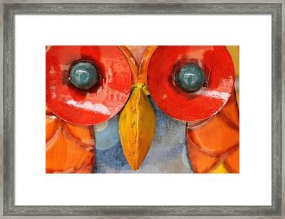 Look Into My Eyes Framed Print by Stefan Kuhn