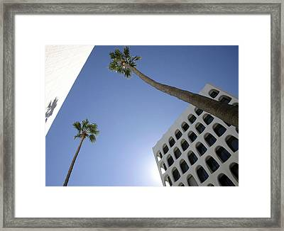 Looking Up In Beverly Hills Framed Print by Cora Wandel