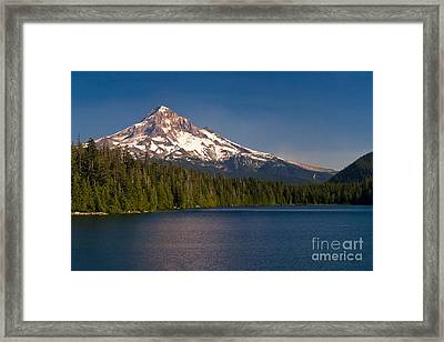 Lost In Summer Framed Print by Matt Tilghman