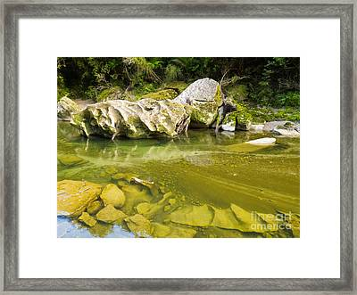Lush Green Rainforest Along Pororai River Nz Framed Print by Stephan Pietzko