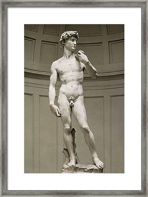 Michelangelo 1475-1564. David Framed Print by Everett
