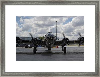 Nose To Nose Framed Print by Peter Chilelli