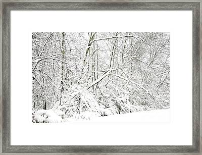 October Snow  Framed Print by Thomas R Fletcher
