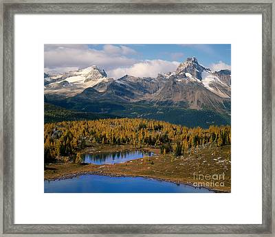 Odaray And Cathedral Mountains Framed Print by Tracy Knauer