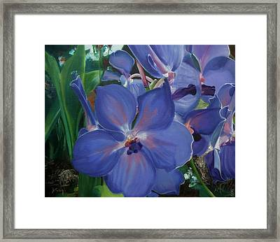 Orchids Framed Print by Donna Tuten