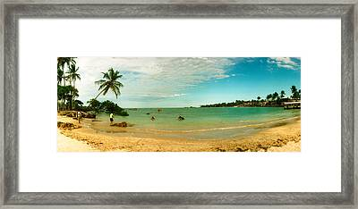 Palm Trees On The Beach, Morro De Sao Framed Print by Panoramic Images