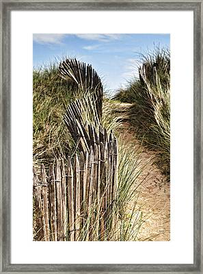 Path Through Dunes Framed Print by Colin and Linda McKie