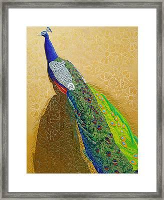 Persian Fashion Framed Print by Vlasta Smola