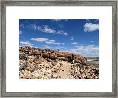 Petrified Forest, Argentina Framed Print by Science Photo Library