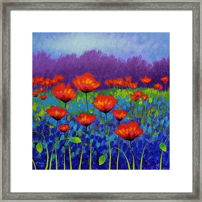 Poppy Meadow Framed Print by John  Nolan