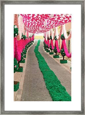 Portugal, Santarem District Framed Print by Emily Wilson