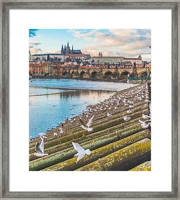 Prague Framed Print by Cory Dewald