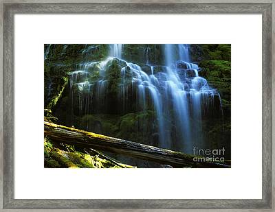 Proxy Falls Oregon Framed Print by Bob Christopher