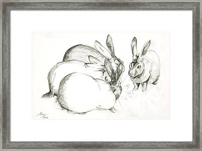 Rabbits Framed Print by Jeanne Maze
