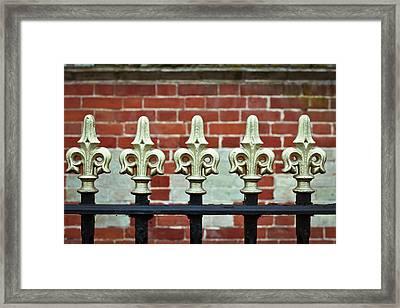 Railings Framed Print by Tom Gowanlock