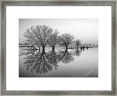 Reflection Framed Print by Tom Druin