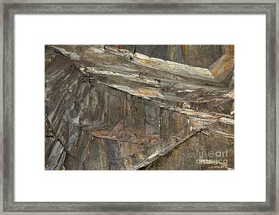 Rock  Framed Print by Graham Foulkes