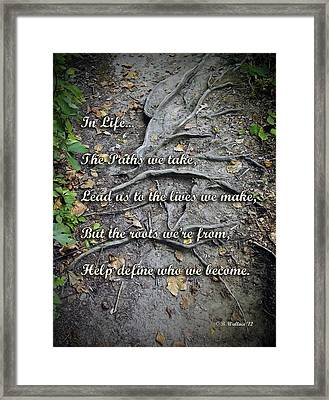 Roots Framed Print by Brian Wallace