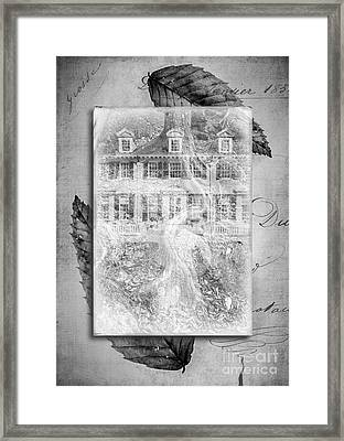 Roots Framed Print by Edward Fielding