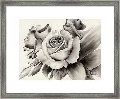 Rose Bouquet Framed Print by Hailey E Herrera