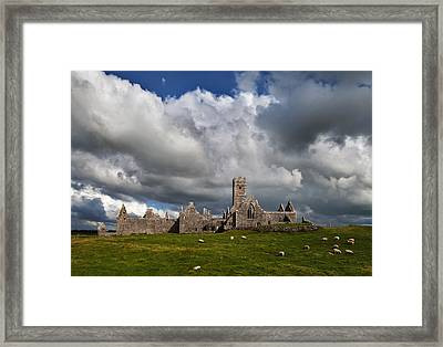 Ross Errilly Franciscan Friary 1351 Framed Print by Panoramic Images
